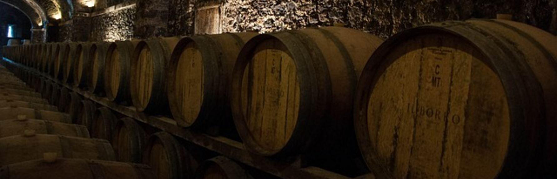 Lista dos vinhos Vini